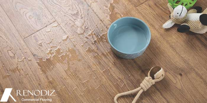 Is waterproof wood flooring real?!